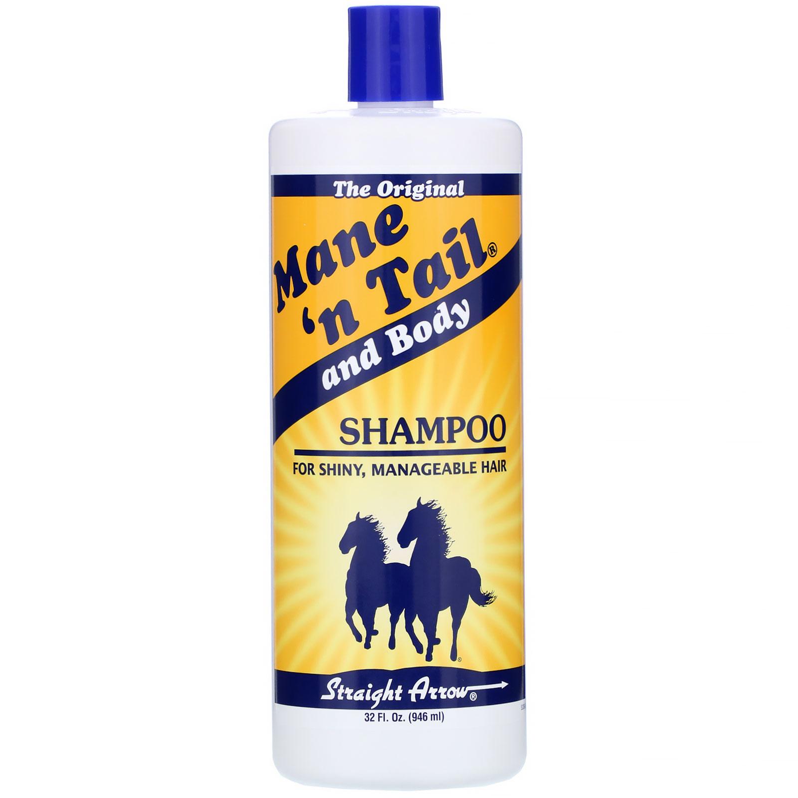 شامبو ذيل الحصان